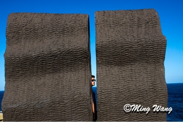SculptureBondi_DSC05178_800