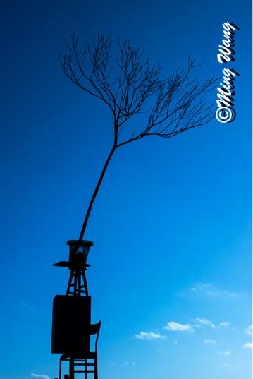 SculptureBondi_DSC05221_800