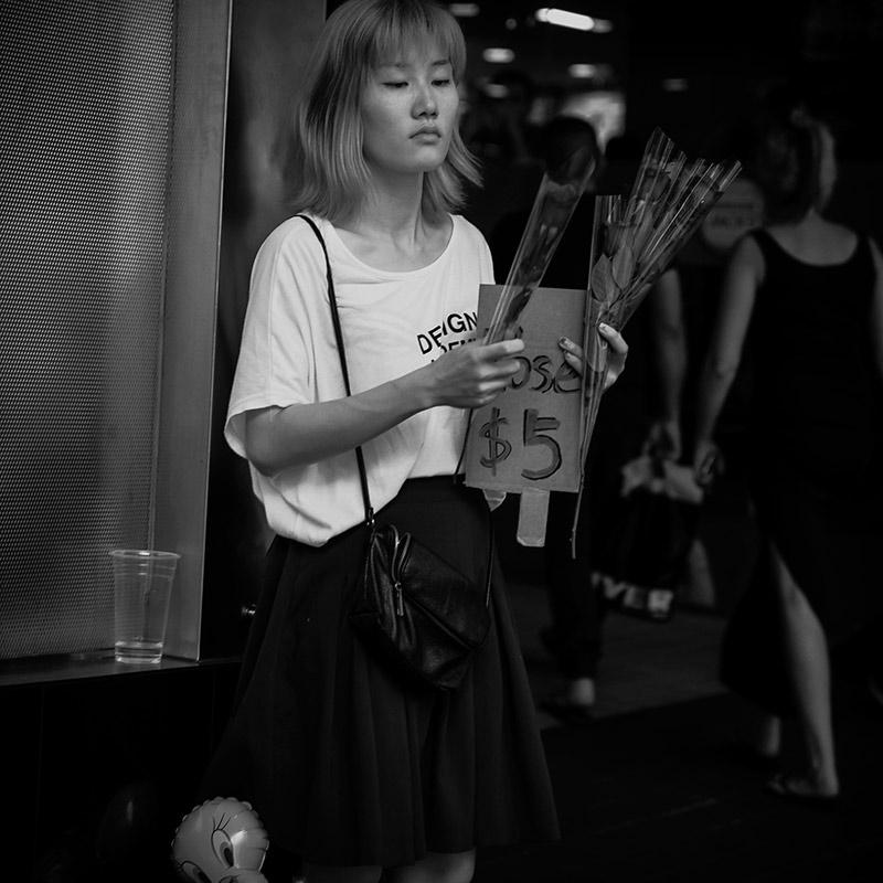 Rose Girl, Sydney, 02/2016